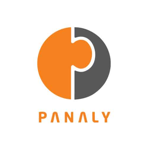 Panaly Consulting