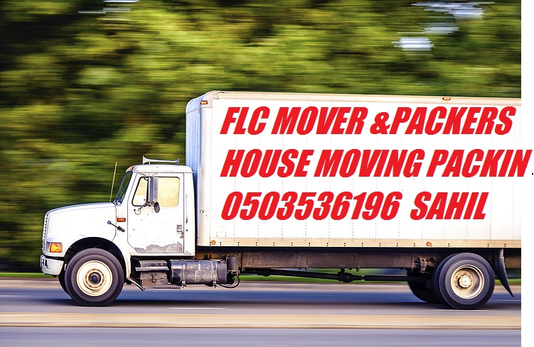 PROFESSIONAL HOUSE MOVERS & PACKERS