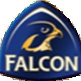 Golden Falcon Pest Control and Cleaning Services
