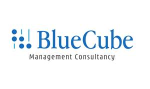 Blue Cube Management Consultancy