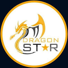 Dragon Star Shipping LLC