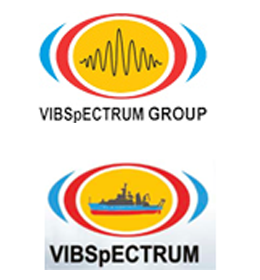 VIBSPECTRUM INTERNATIONAL LLC