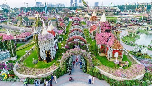 Smell the roses at Dubai Miracle Garden