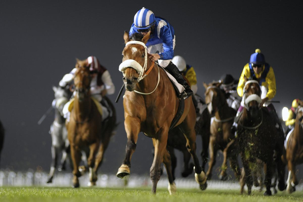 Racing at Meydan 2015-16