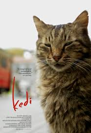 Cinema Akil Screening: Kedi
