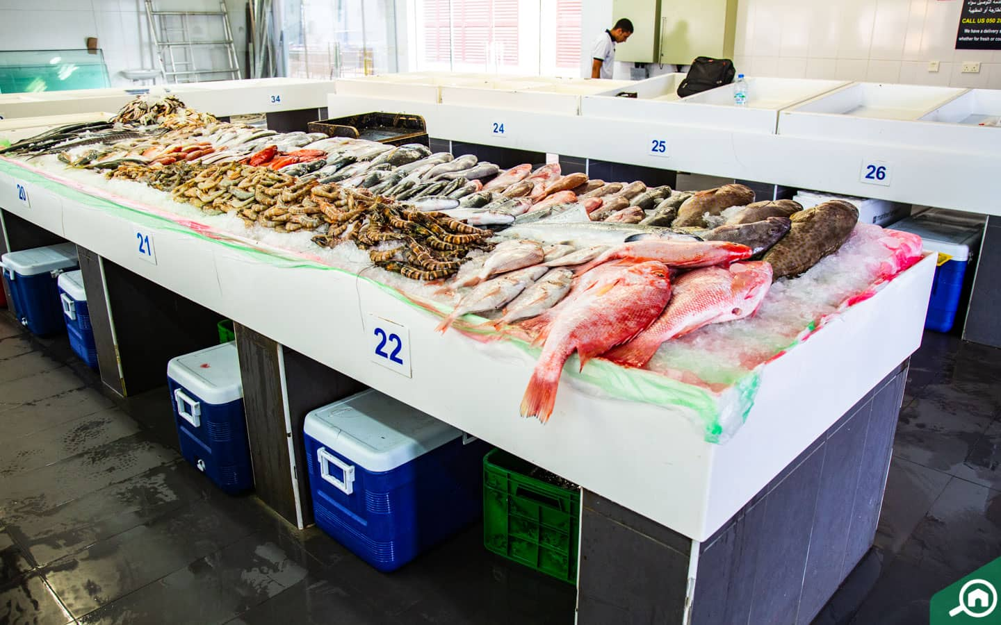 Shop on Wednesdays for seafoods