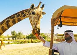 Dubai Safari Park will reopen to guests from October 5