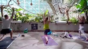 Yoga at The Green Planet