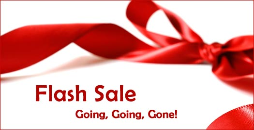 New Year Flash Sale promises amazing discounts for shoppers